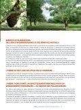 Livret Arbres & Pollinisateurs - Arbre & Paysage - Page 5