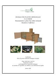Séchage des plantes médicinales à la ferme par - Agri-Réseau
