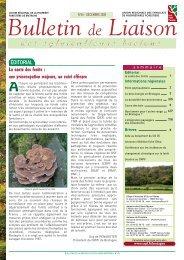 Le bois énergie en Bretagne - Centres Régionaux de la Propriété ...