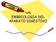 Embriología del Aparato Digestivo