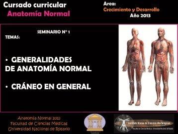 seminario n°1. generalidades y cráneo i