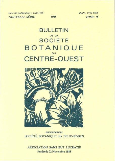 Ancienne Planche Botanique d/'après Gaston Bonnier Grappe de Raisin Vigne