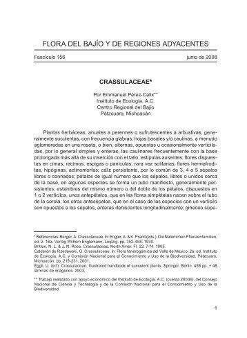 flora del bajío y de regiones adyacentes - Instituto de Ecología, A.C.
