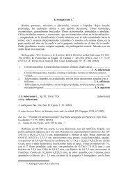 8. Symphytum L.* Hierbas perennes, unicaules o pluricaules ...