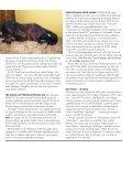 Nr 2 - ASVT - Page 3