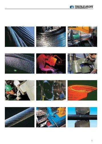 INTERIEUR - Mittal Steel