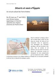 Déserts et oasis d'Égypte - Terre Entiere