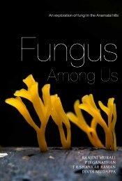 Fungus Among Us - Nature Conservation Foundation