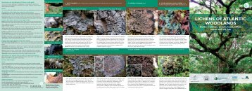 LICHENS OF ATLANTIC WOODLANDS - Plantlife