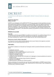 DICREST - aciers pour utilisation en milieu acide - Dillinger Hütte GTS