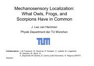 Mechanosensory Localization: What Owls, Frogs, and Scorpions ...
