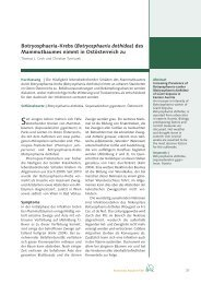 Botryosphaeria-Krebs (Botryosphaeria dothidea) des ... - BFW
