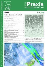 pdf [4.457 KB] - BFW