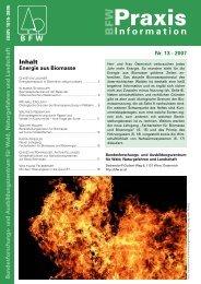 pdf, 700 kB - BFW
