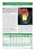 pdf, 700 kB - BFW - Seite 3