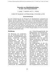 Inversion von Metalldetektordaten im Zeit- und Frequenzbereich
