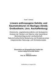 Frank T. Schmelz - Justus-Liebig-Universität Gießen
