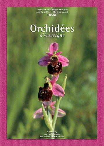 Orchidées - Frane Auvergne Environnement