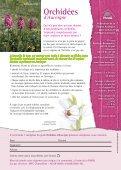 Orchidées - Frane Auvergne Environnement - Page 2