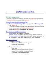Polycopié format .pdf
