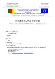 dossier d'appel d'offres - Site de l'Ordonnateur National du FED au ...
