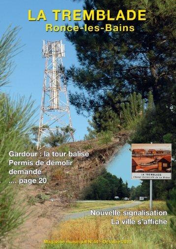 Magazine-44.pdf (page 13) - oceane-pourlaviedesreins.fr