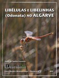 Odonatas no Algarve - iDescobrir - Avançada - Turismo do Algarve