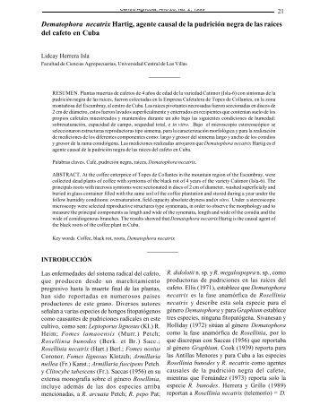 Dematophora necatrix Hartig, agente causal de la pudrición negra ...