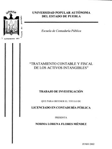 tratamiento contable y fiscal de los activos intangibles - Biblioteca ...