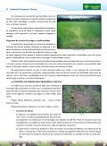 Descarregar (PDF) - agaca - Page 6
