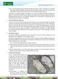 Descarregar (PDF) - agaca - Page 7