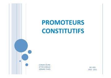 1- Promoteurs constitutifs - Master VRV : Valorisation Ressources ...
