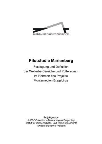 Pilotstudie Marienberg - Wirtschaftsförderung Erzgebirge GmbH