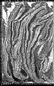 Second volume des antiquitez de la Gaule Belgicque,et de plusieurs ... - Page 2