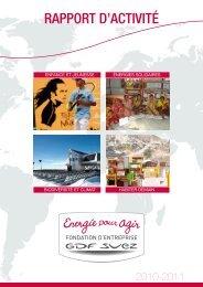 rapport d'activité - GDF Suez