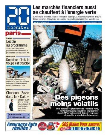 Des pigeons moins volatils