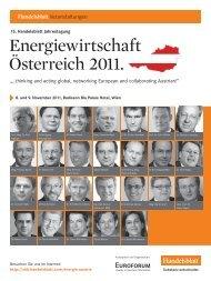 Energiewirtschaft Österreich 2011.