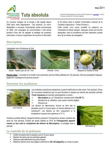6 free magazines from ca06 fr for Chambre d agriculture hautes alpes