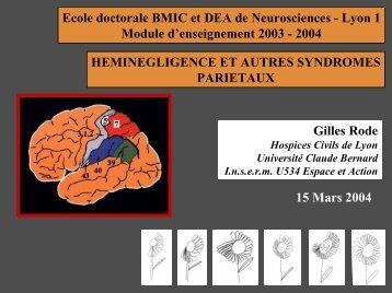 Héminégligence et autres pathologies du lobe pariétal