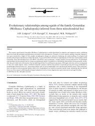 Evolutionary relationships among squids of the family ... - Front Page