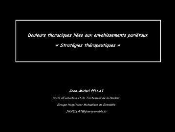 Jean-Michel Pellat - Afsos