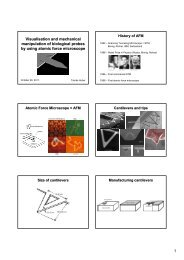 1 Visualisation and mechanical manipulation of biological probes by ...