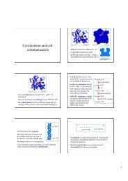 Cytosceleton and Cell signalling BV 20100505