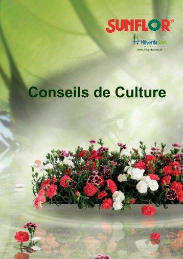 Conseils de Culture - HilverdaKooij