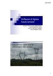 Lignes électriques et avifaune - IMEP