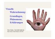 Visuelle Wahrnehmung: Grundlagen, Phänomene ... - BiwiWiki