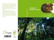 Des arbres, la forêt... et nous !