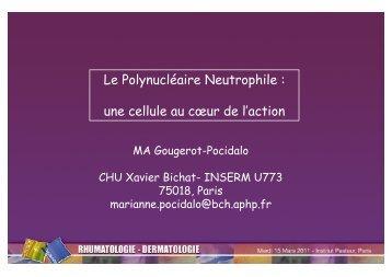 Le Polynucléaire Neutrophile : une cellule au cœur de l'action