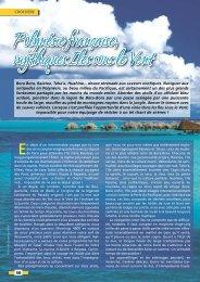 Polynésie française, mythiques Iles sous le Vent - Yachting Sud
