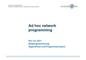 Ad hoc network programming